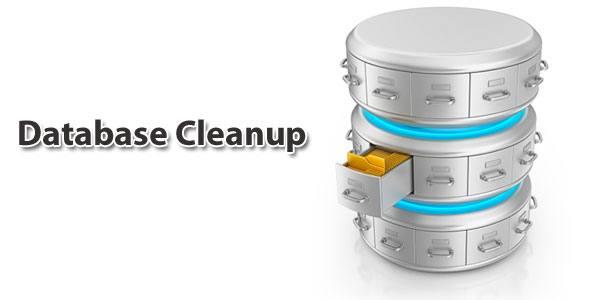 آموزشDatabase Cleanup در افزونه WP Fastest Cache
