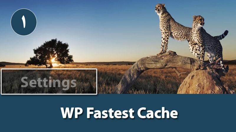 آموزش افزونه WP Fastest Cache قسمت 1