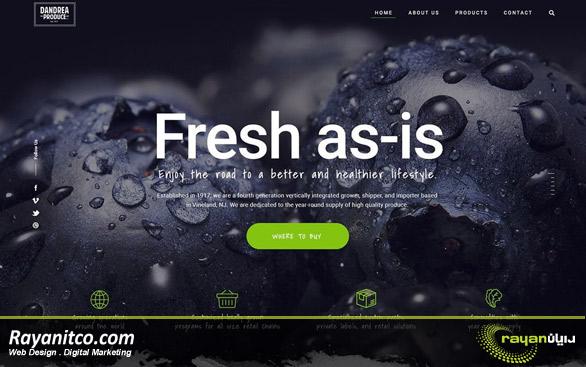 نکته برتر در زمینه طراحی وب