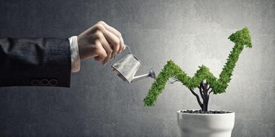 چگونه از طریق وب سایت مان، تجارت سودآوری داشته باشیم؟