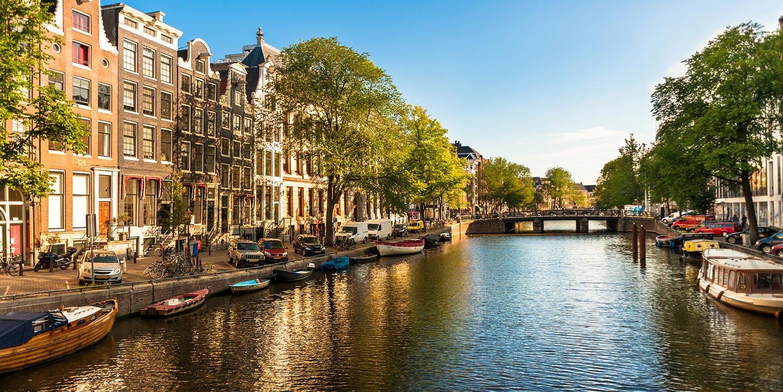 طراحی سایت در هلند