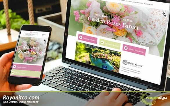 طراحی سایت فروشگاهی در هلند
